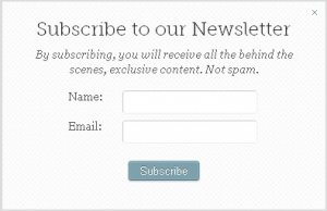 A simple newsletter form